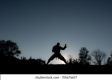 Martial Artists Silhouette - Forearm Block