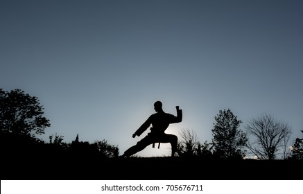 Martial Artists Silhouette - Twin Block