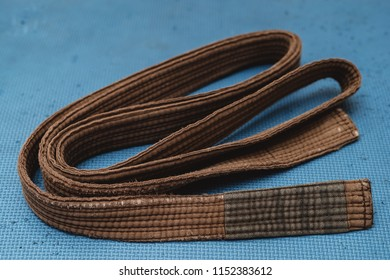 Martial Arts Brown Belt Brazilian JiuJitsu medium 1