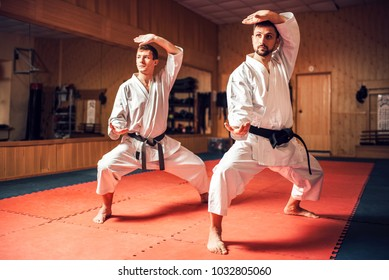 Martial arts masters training combat skill