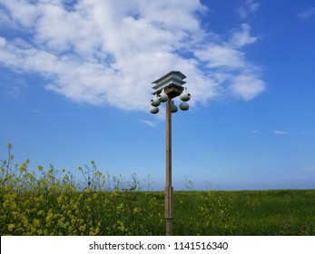 Martin house & suspended swallow gourds mounted on a tall wooden post in a field with wildflowers, framed by a blue sky with clouds. Perspective horizontal view.