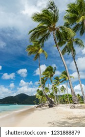 Martinique island beach