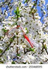 Martisor - romanian symbol of the beginning of spring