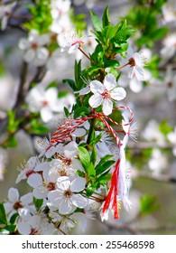Martisor - romanian symbol of the beginning of spring