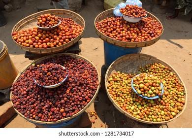 Marula fruits from Malawi