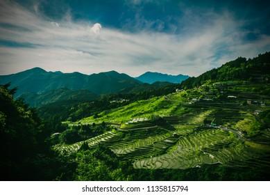 Maruyama Senmaida rice terraces, Mie, Japan