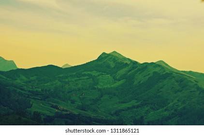 'Marvelous Kannan Devan tea hills of Munnar, Kerala, South India'