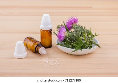 Mary thistle and homeopathic medicine