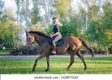 Maryborough, Queensland / Australia - May 25th 2019: Australian girl riding a thoroughbred show-jumping horse round the paddock at sunset.