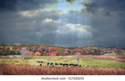 Maryland farm in Autumn with Fall colors and an approaching storm