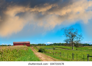 Maryland farm with an old dirt country road leading to a red barn during Spring
