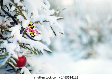 Maryland flag. Christmas tree branch with a flag of Maryland state. Xmas holidays greetings card. Winter landscape outdoors.