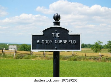 MARYLAND, USA - JUNE 6, 2014:  Monuments at Antietam National Battlefield, known as the bloodiest one day battle in American history.