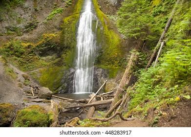 Marymere Falls in Olympic Park, Washington, USA