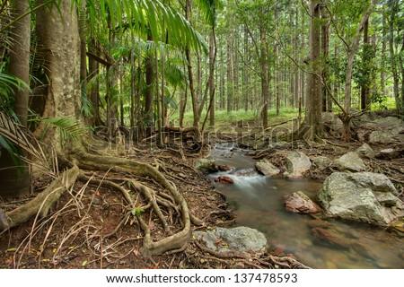 Marys creek