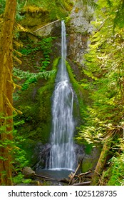 Mary's Falls in Olympic National Park, Washington.