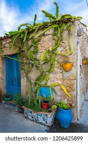 Marzamemi is one among the most beautiful 20 sea villages of Italy. Marzamemi is a municipality part of the Province of Syracuse, Sicily. Italy.