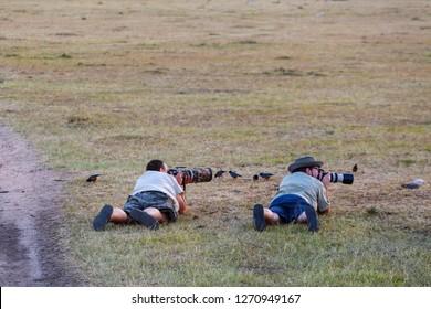 Masai Mara, Kenya, February, 2015,  Nature photographers photographing birds lying down on the ground