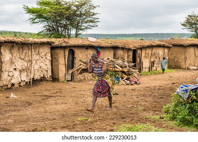 MASAI MARA, KENYA - OCTOBER 17, 2014: African woman from Masai tribe carrying a bunch of wood in her village. The Maasai are a Nilotic ethnic group living in southern Kenya and northern Tanzania