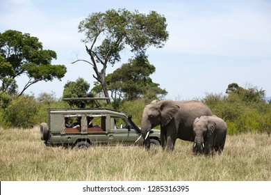MASAI MARA, KEYNA-SEPTEMBER 09: Tourist enjoying game drive on safari Jeep in Masai Mara National Reserve on 09 September, 2018 at Masai Mara, Kenya, Africa