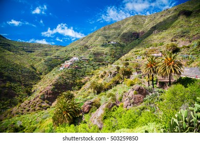 Masca village on the hillside with small houses and palm trees, Tenerife, Canary Islands, Spain