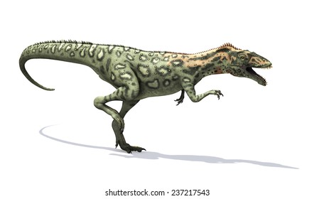 The Masiakasaurus was a small dinosaur that lived during the Cretaceous period - 3d render.