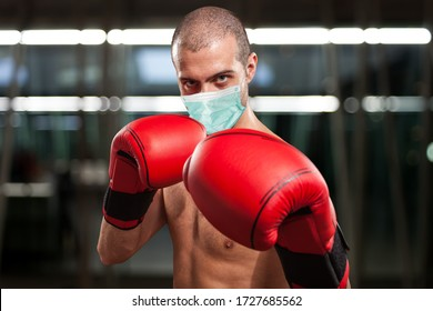 Masked boxer during coronavirus pandemic, funny concept
