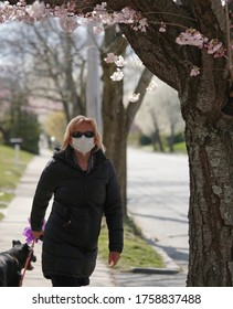 A masked Caucasian woman walks her dog in her neighborhood during the Coronavirus Pandemic