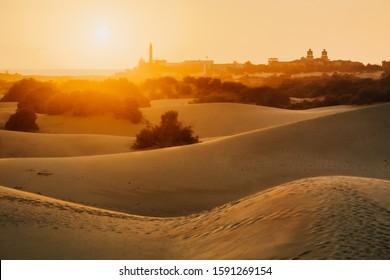Maspalomas dunes in Gran Canaria in sunrise light.