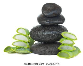 massage black stones with aloe vera isolated on white background