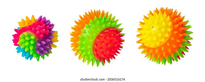 Massage rainbow multi colored prickly three balls isolated on white. Colorful bright isolated spiky toy ball  close up.  Rubber ball for games with dog or cat. Massage ball similar to coronavirus.