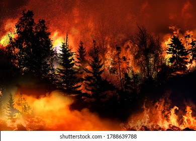 Massive California Wilde fire forcing thousands of people to evacuate their homes, wildfires spreading rapidly, escaping to save their lives, destroyed silhouette, natural calamity, global warming.