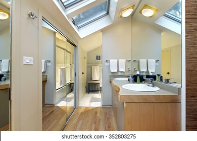 Master bath in suburban home with skylights