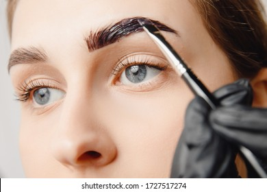 Master brush dye henna eyebrows woman in beauty salon. Correction of brow hair.