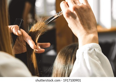 The master hairdresser cuts the ends of the girl's hair after washing and before styling in the beauty salon.