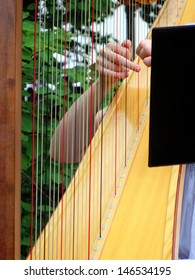 Master harpist plucking her strings in an outdoor setting