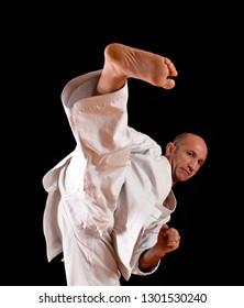Master martial arts kick