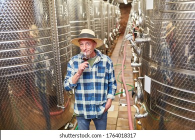 Master winemaker with a glass of red wine in the winery in front of a fermentation tank