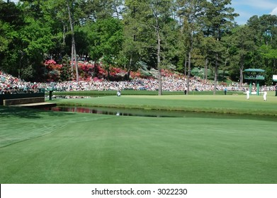 Masters.  Fairway at Augusta