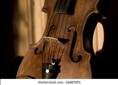 Master's violin