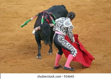 Matador and bull in bullfight. Sevilla, Spain.