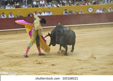 A Matador Fighting In Typical Spanish Bullfight
