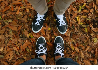 The matching sneakers and carpet of fallen leaves