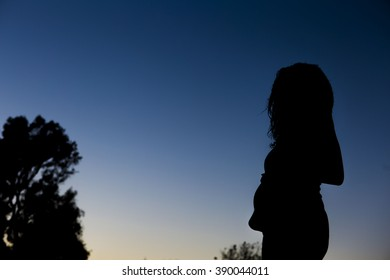 Maternity Silhouette With Blue Skies at Sunset