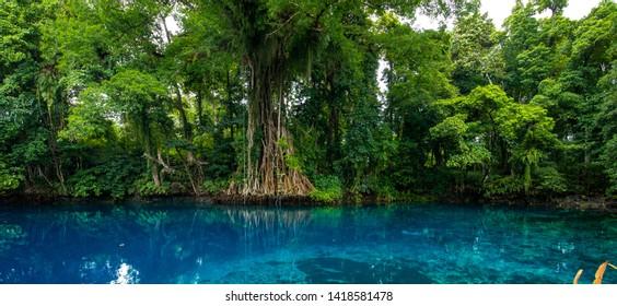 Matevulu Blue Hole, Espiritu Santa Island, Vanuatu, famous tourist destination