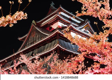 matsue castle at night with full bloom cherry blossom