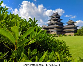 Matsumoto, Japan - 2018-09-05: Matsumoto Castle was just so beautiful from every angle. Even when focused on one of the bushes in front of it.