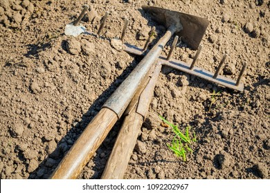 Mattock and rake on soil