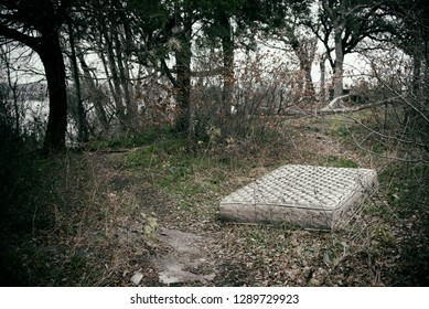 Mattress in the Woods