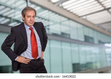 mature business man portrait in a office building